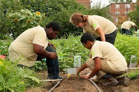 black youth on farm image2